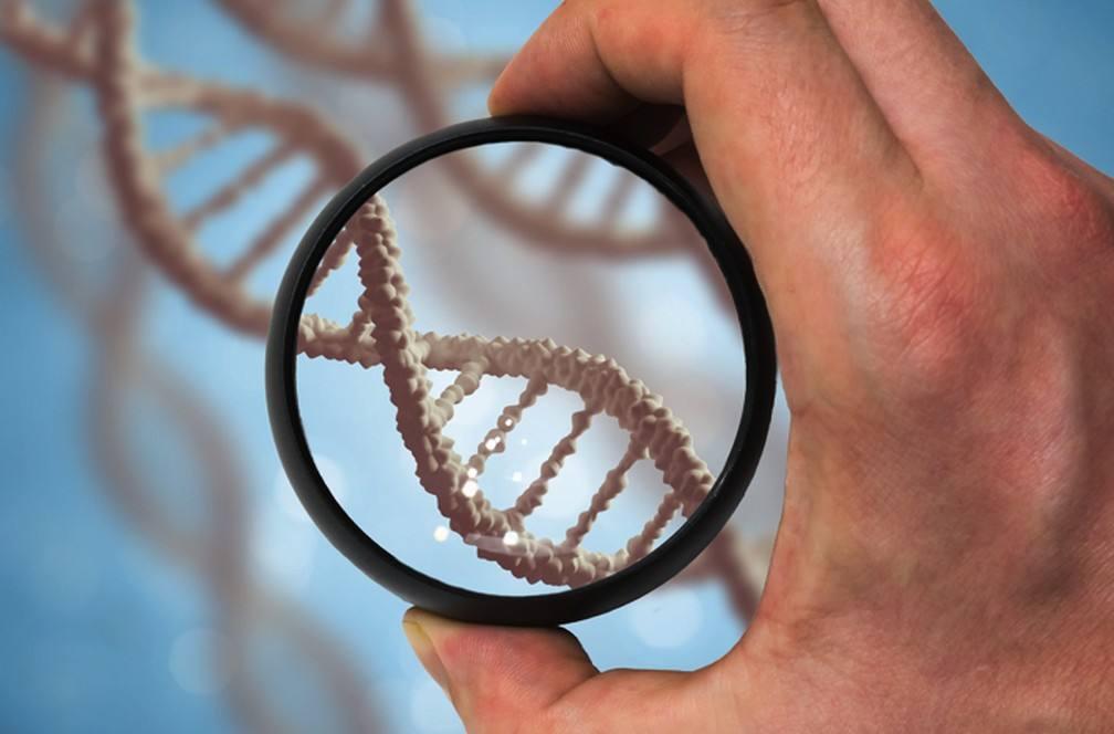 Conheça o DNA do seu cliente
